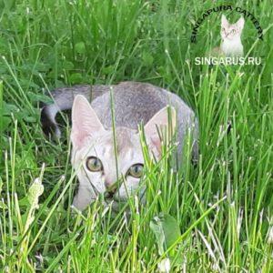 PicsArt_06-06-09.59.32