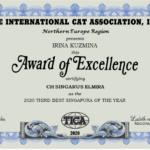 Elmira 2020 THIRD BEST SINGAPURA OF THE YEAR