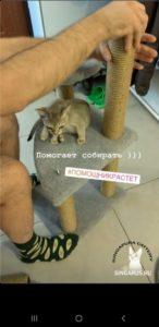 Singa RUS Parker